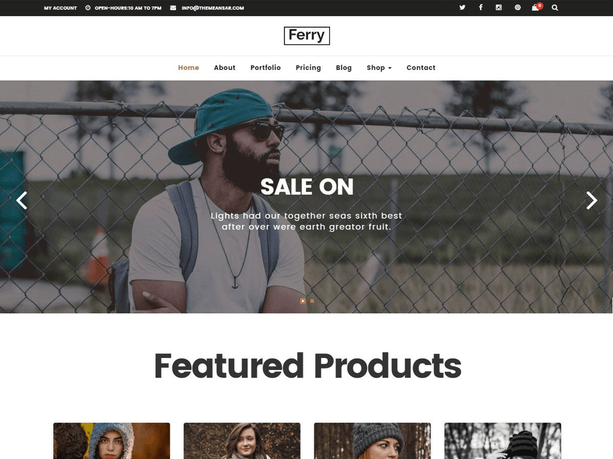 Ferry Lite Woocommerce Wordpress Theme Themeansar